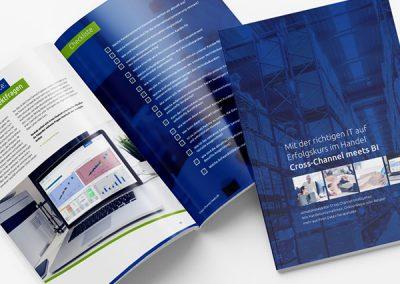 Info Broschüre godesys AG